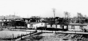 A322 Heinefeldsiedlung, im Hintergrund der Nordfriedhof Q StAD 038.106.003